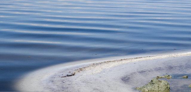 توسعه کشت گلخانهای راهکاری برای برونرفت از بحران کمآبی دریاچه ارومیه