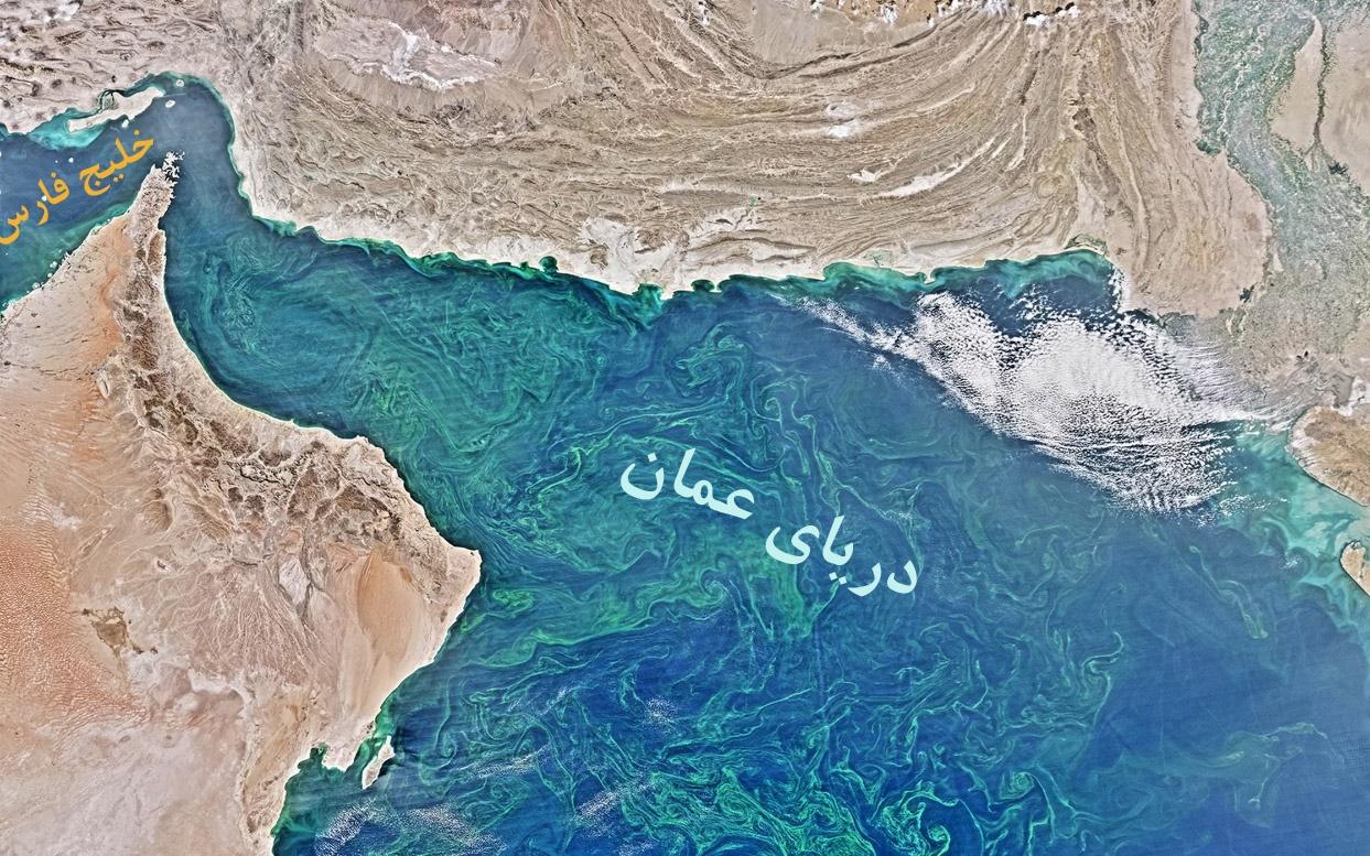 کشف بزرگترین منطقه مرده دریایی