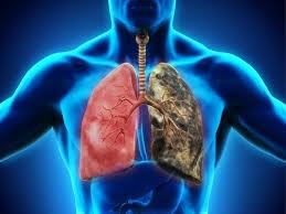 مجله نکته بهداشتی روز,سلامت