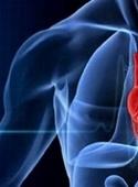 شناسایی آنتی اکسیدان طبیعی که سلامت قلب را بهبود میبخشد
