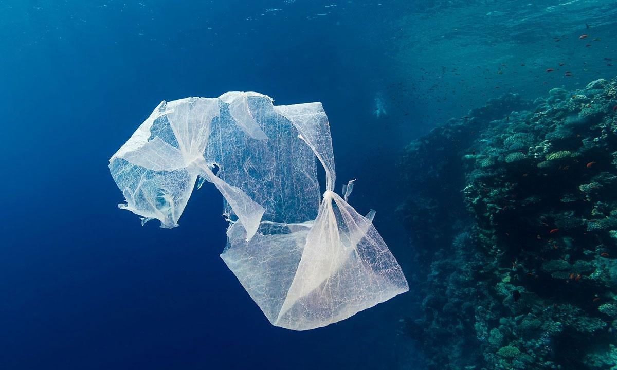 پلاستیک ۸۰ درصد زبالههای دریایی را تشکیل میدهد