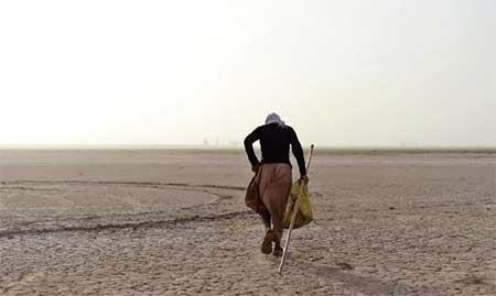 ۱۴۳ میلیون هکتار از زمینهای کشور در معرض بیابانزایی