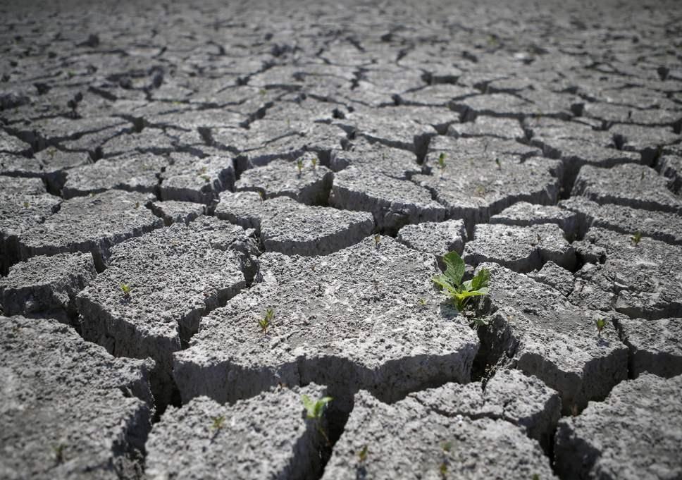 هشدار جهانی نسبت به تخریب زمین و کاهش چشمگیر محصولات کشاورزی