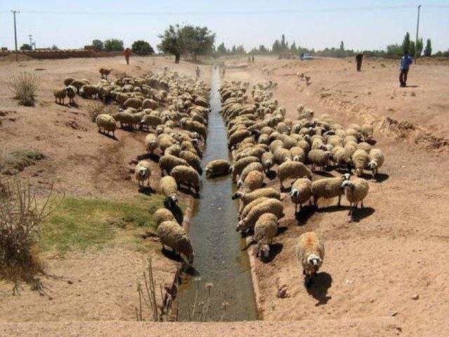 """""""قنات""""؛ معجزه ایرانیان باستان برای تامین آب"""