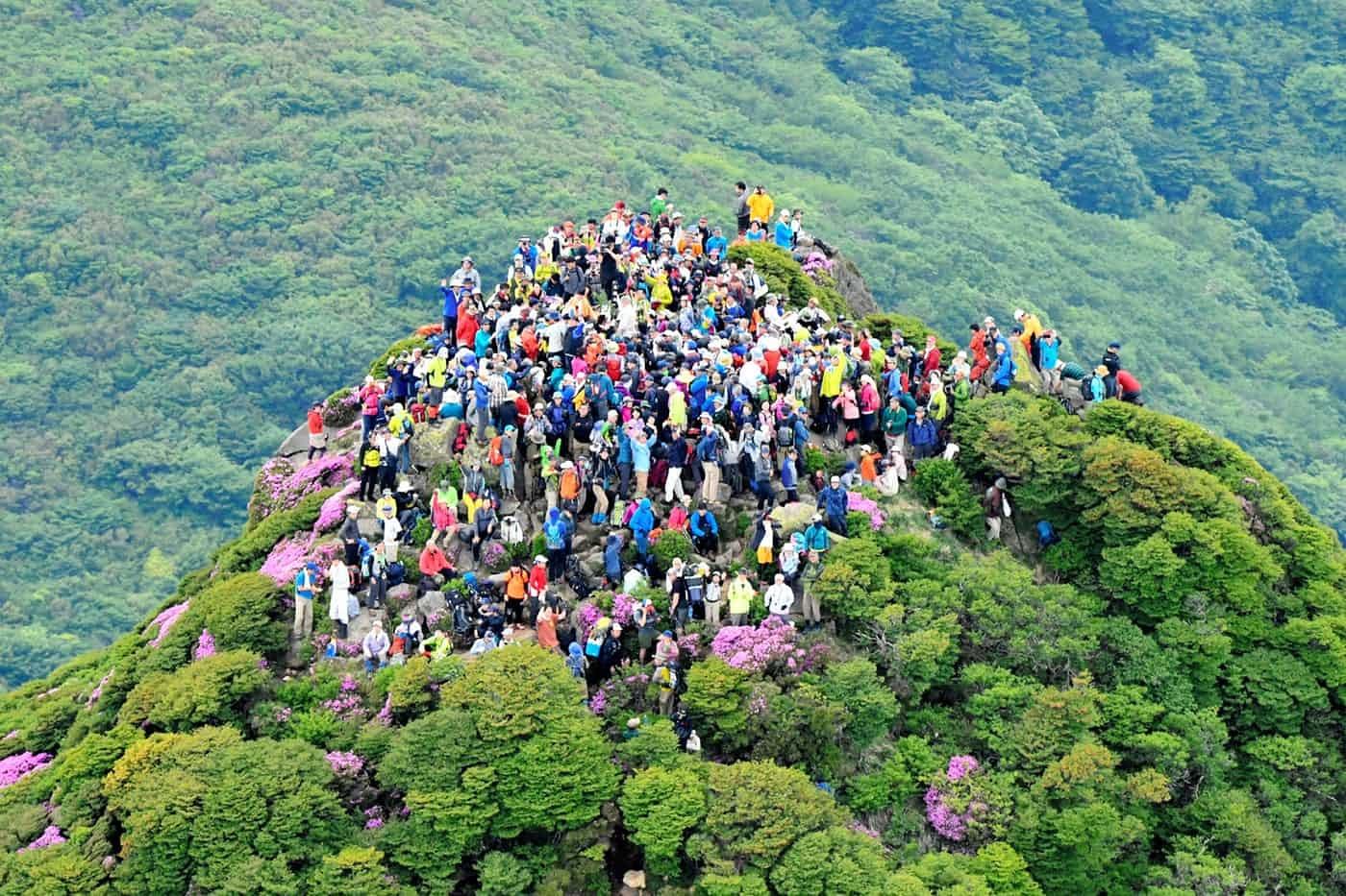 عکس روز: در راس قله سبز
