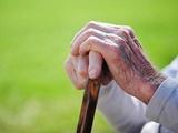 ۹ درصد جامعه کشور سالمند هستند