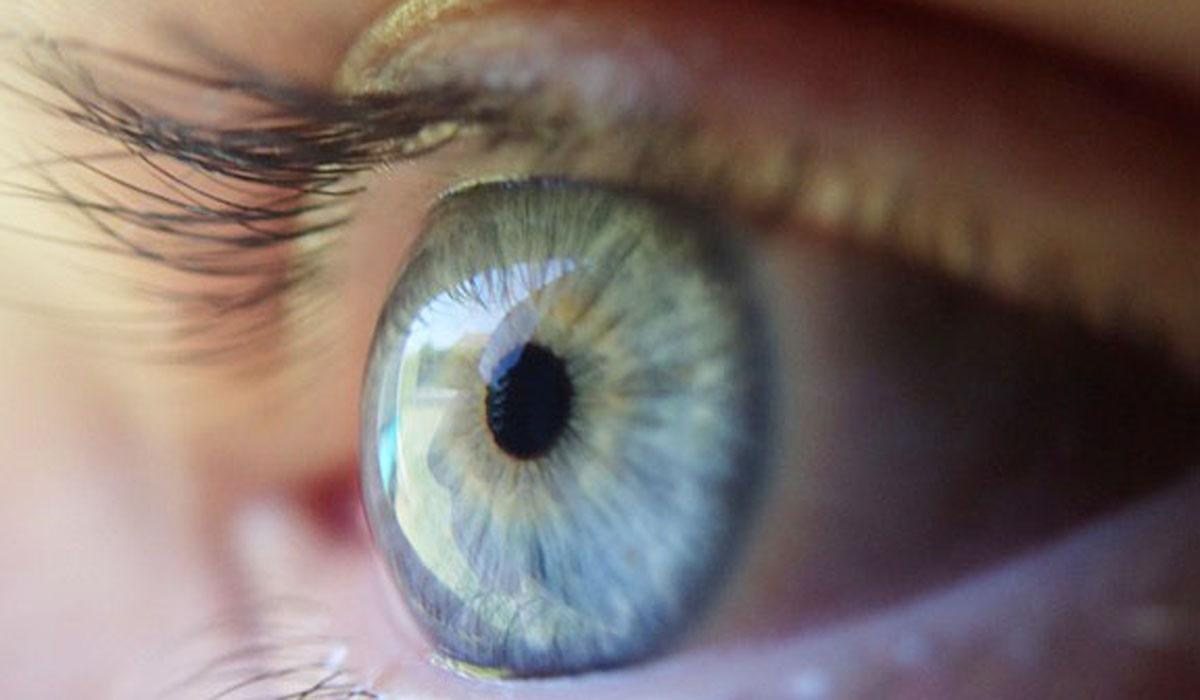 ژن نابینایی شناخته شد