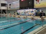 مسابقات شنای قهرمانی کشور پیوند اعضا با معرفی برترینها برگزار شد