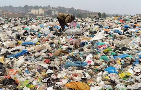 پلاستیک زیستی از کاه ساخته شد