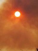 گرمای شدید روی تفکر تاثیر میگذارد