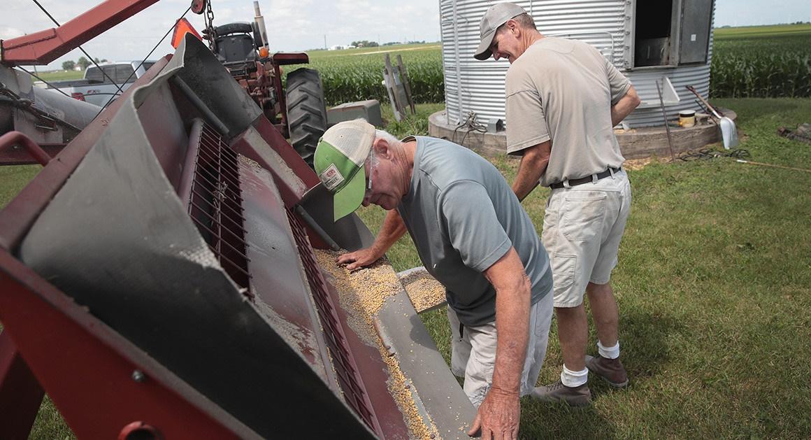 کشاورزان آمریکایی بازنده جنگ تجاری پکن - واشنگتن