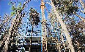 برج باغ