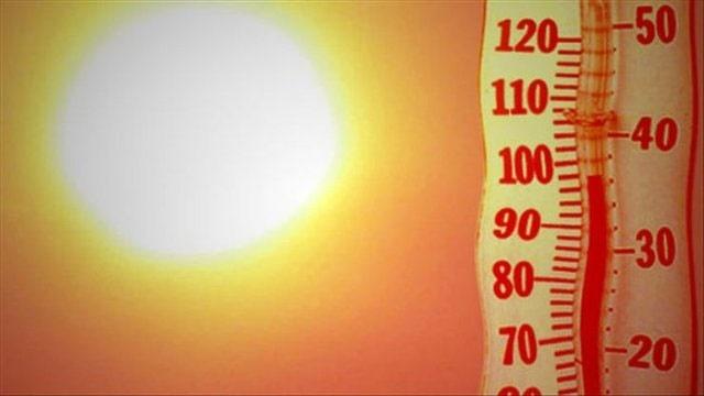 تلفات بیسابقه گرمای کشنده در انگلیس