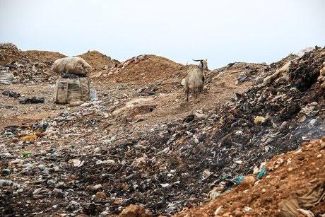 تنها ۱۰ درصد مراکز دفن زباله شهری آذربایجانشرقی با مجوزهای زیستمحیطی است