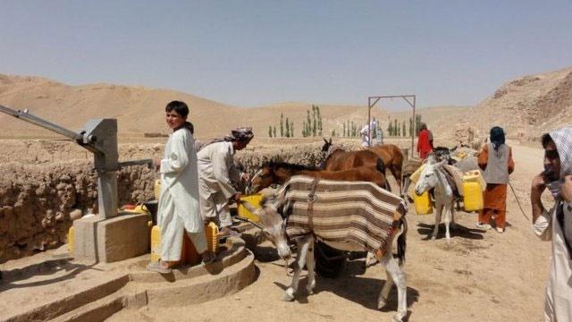 خشکسالی بیش از درگیری در افغانستان عامل مهاجرت است