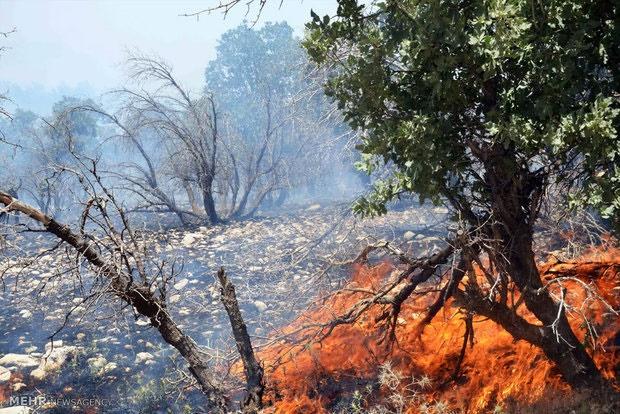 آتش در پلنگ آرام جنگل ابر مهار شد