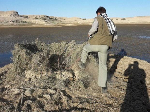 تخریب ۱۲ کومه شکار در استان هرمزگان