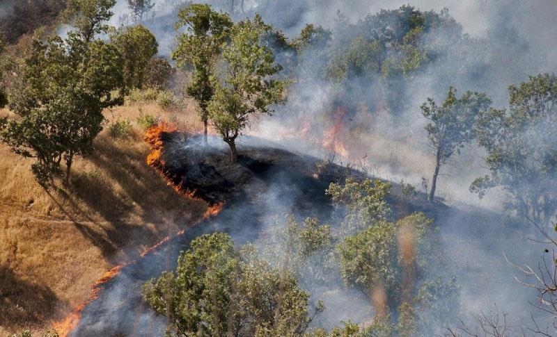 کاهش ۲۸ درصدی آتشسوزی در مناطق تحت مدیریت سازمان محیط زیست