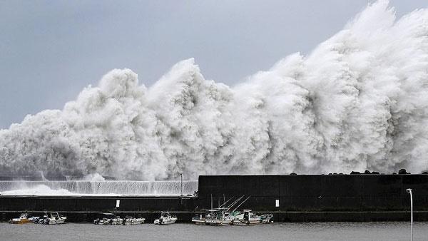 طوفان جبی ژاپن