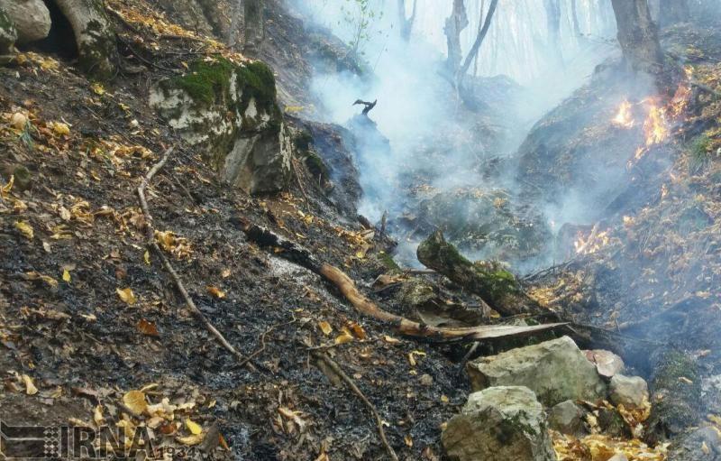 بخشهایی از جنگل ابر شاهرود دچار آتشسوزی شد