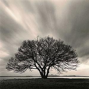 عکس منظره سیاه و سفید