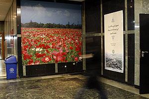 در و دیوار ساختمان 137 پر است از تابلوهای تبلیغاتی و منظره