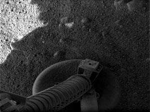 یکی از اولین تصاویر فونیکس از پایه خودش بر روی خاک مریخ