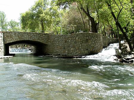 عکس از : سازمان سازمان پارکها و فضای سبز مشهد
